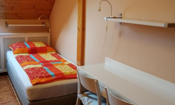 Szállás Esztergomban, légkondicionált egyágyas szoba fürdőszobával